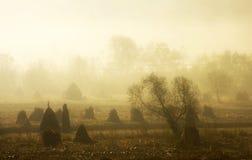 Romanian mountain landscape with fog Stock Photo