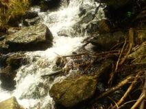 Romanian Mountains River Landscape Stock Image