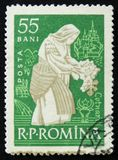 Romanian postage stamp shows woman tending vine Cotnari, circa 1960. MOSCOW, RUSSIA - APRIL 2, 2017: A post stamp printed in Romania shows woman tending vine Stock Photography