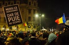 Romanian Protest 05/11/2015 Stock Photography