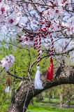 Romanian spring symbol. Named Martisor is a traditional holyday celebrating the beginning of spring, on March 1. Martisor is a red and white string from which a Royalty Free Stock Photo