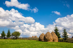 Romanian summer landscape with haystacks. Loose stacked hay built around a central pole in Carpathian Mountains, Romania Stock Photography