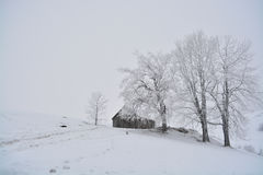 Romanian traditional barn located behind some trees full of snow in fall season. A traditional barn located in Romania Royalty Free Stock Image