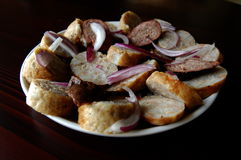 Romanian traditional food. Traditional romanian food made from pork and rice and red onion royalty free stock image