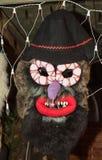 Romanian traditional mask Royalty Free Stock Photos