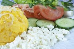 romanian traditionell vegetarian för mat Arkivbilder