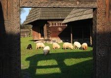 romanian traditionellt för arkitektur Arkivbild