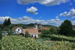 Romanian village. A village in middle of a corn field Stock Photos