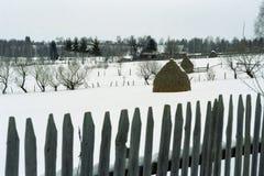 Romanian village nature. On winter Stock Photography