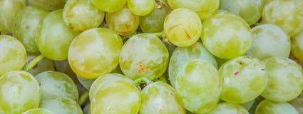 Romanian white grape background Stock Photography