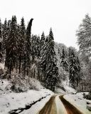 Romanian white wilderness. Landscape from northern carpatians stock images