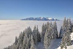 Romanian winter landscape - Bucegi Mountains Royalty Free Stock Photography