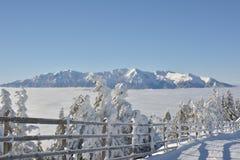 Romanian winter landscape - Bucegi Mountains Royalty Free Stock Photo