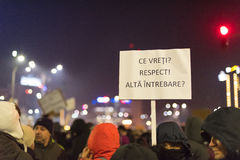 Romanians protest w Wiktoria kwadracie Zdjęcia Royalty Free