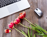 Romanic flowers on rustic work desktop Royalty Free Stock Photo