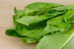 Romano salad Stock Photography