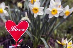 romans Kwiaty i talerz w kształcie serce Zdjęcia Royalty Free