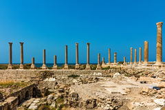Romans ruins Tyre Sur South Lebanon Royalty Free Stock Photo
