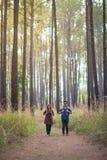 Romans w lesie fotografia stock