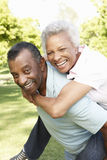 Romantic African American Couple Having Fun In Park Royalty Free Stock Image