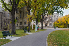 Romantic alley in the University of Saskatchewan Royalty Free Stock Images