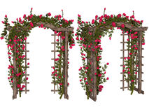 Romantic arbor with  pink  roses Stock Photography