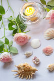 Romantic arrangement with a candle, roses ans seashells. On gray background Stock Photos