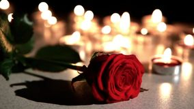 Romantic atmosphere : candles with rose stock video
