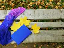 Romantic autumn composition. Autumn composition made of shawl , maple leaves and a book on a bench royalty free stock photography