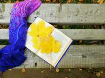 Romantic autumn composition. Autumn composition made of shawl , maple leaves and a book on a bench royalty free stock image