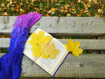 Romantic autumn composition. Autumn composition made of shawl , maple leaves and a book on a bench royalty free stock photos
