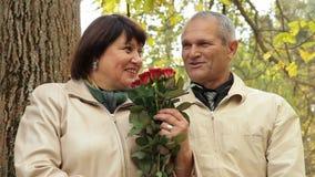 Romantic In Autumn Park stock footage