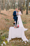Romantic autumn pine forest picknick of happy newlywed couple celebrating their marriage Royalty Free Stock Image