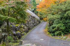 Romantic autumn road in Miyajima, Japan. Romantic autumn road with Japanese maple trees in Miyajima, Japan royalty free stock image