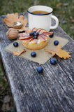 Romantic autumn still life Stock Images