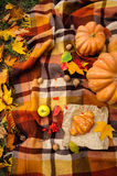 Romantic autumn still life Royalty Free Stock Images