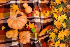 Romantic autumn still life Stock Photography