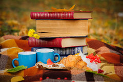 Romantic autumn still life Stock Photography