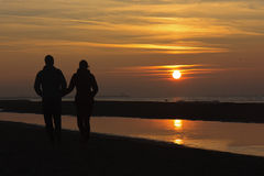 Romantic Autumnal Sun Set Stock Images