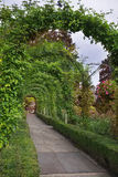 Romantic avenue. Royalty Free Stock Photos