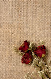 Romantic Background Stock Image