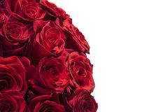Romantic background of a bouquet of red on a white background. Greeting card for Valentines day, birthday, anniversary royalty free stock photos