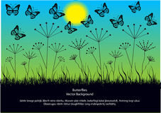 Romantic background with butterflies Stock Image