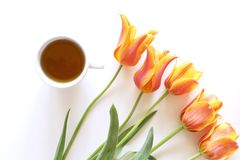 Romantic background with cup of tea and tulips on white table. Soft photo. Greeting card style, place for text. Top view royalty free stock photos
