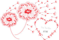 Romantic background with dandelions Royalty Free Stock Photos