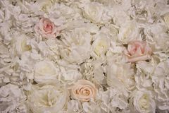Romantic background of flowers. A large bouquet of flowers white roses. For holiday card, booklet and presentation stock photo