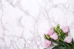 Romantic background with pink flowers on marble table. Top view stock image