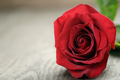 Romantic background with red rose on wood table Royalty Free Stock Photography