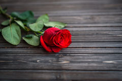Romantic background with red rose on wood table, top view.  Royalty Free Stock Photography