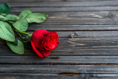 Romantic background with red rose on wood table, top view.  Stock Photography